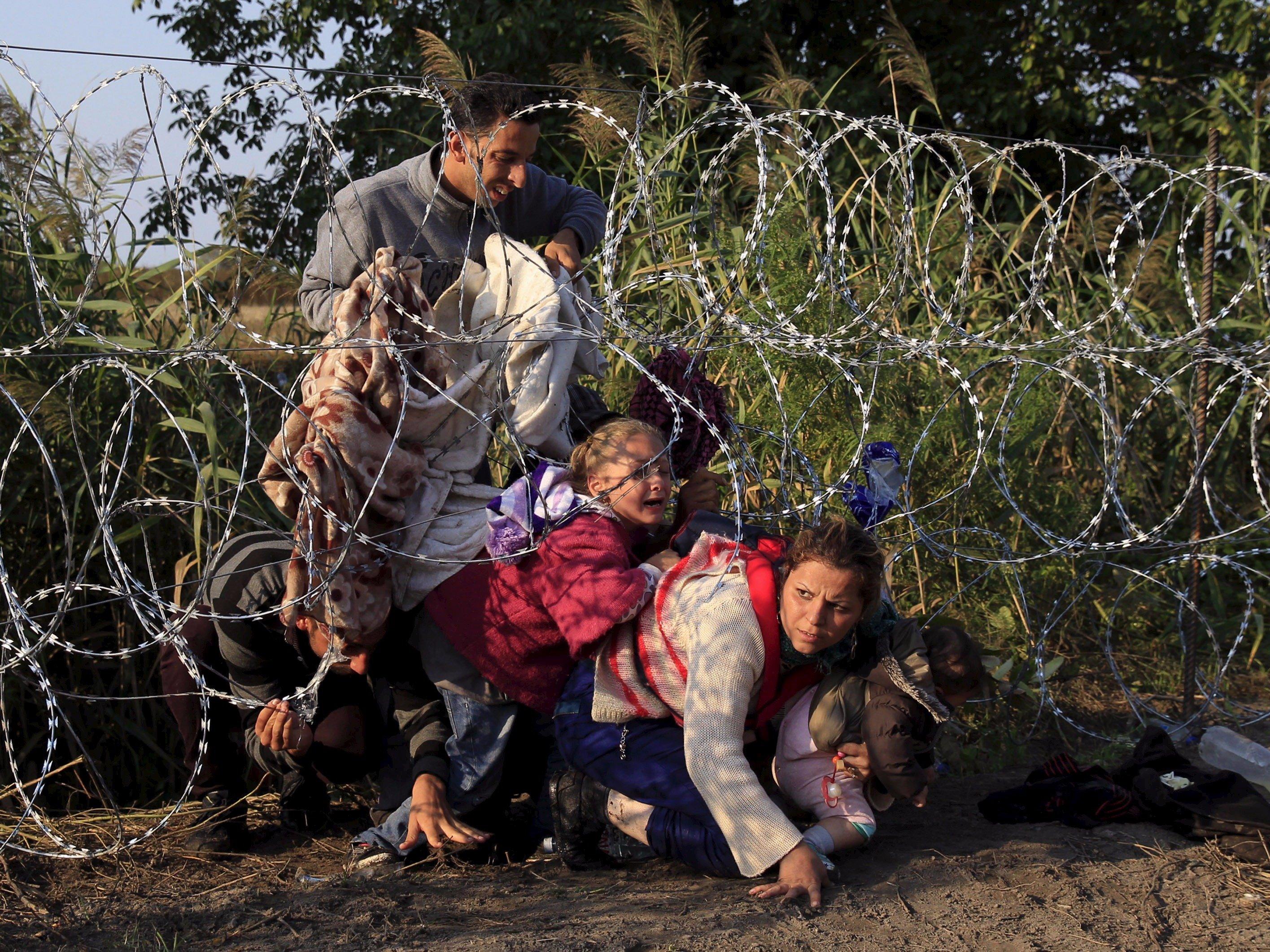 Brexit & Refugees