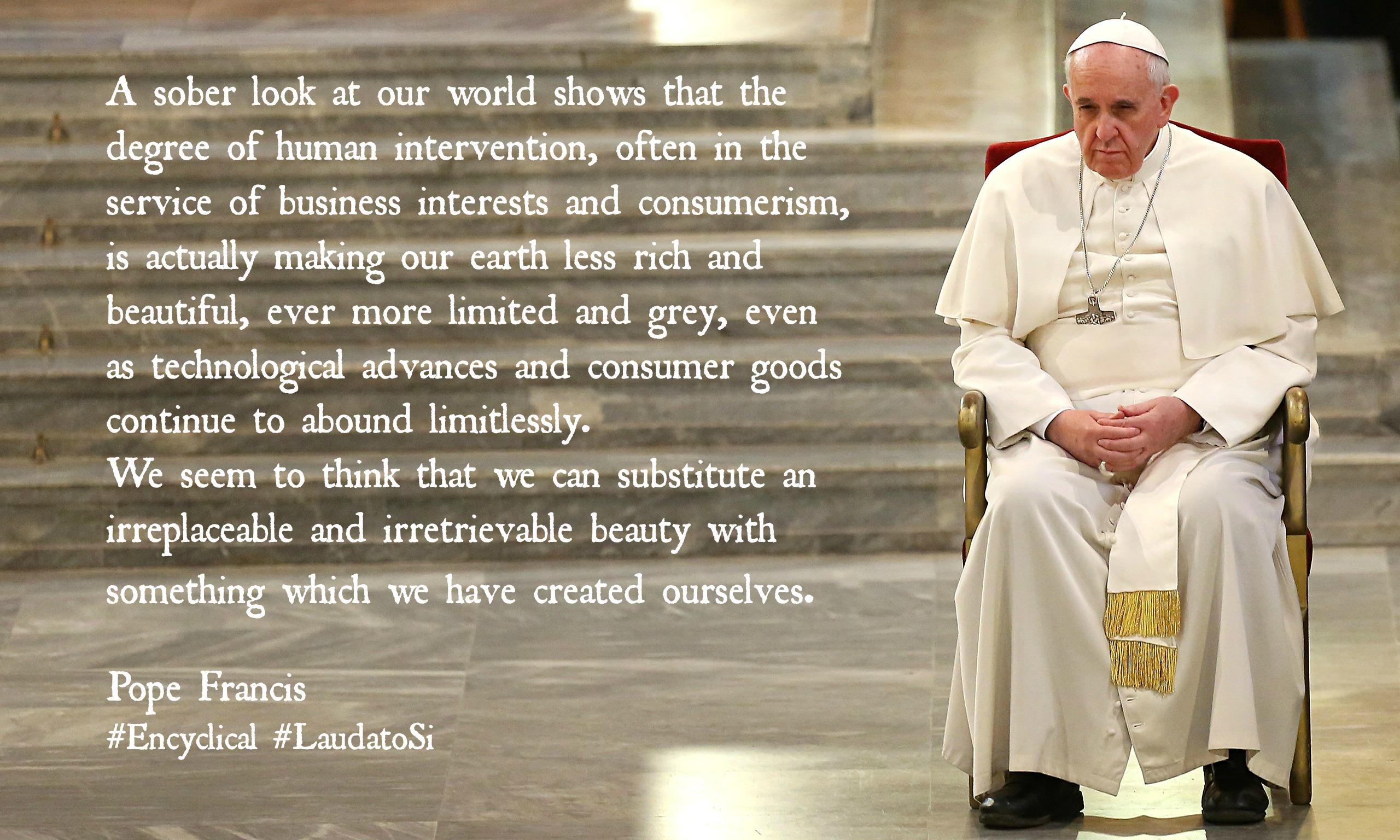 Pope-Francis Harvey